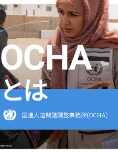 This is OCHA Japanese brochure