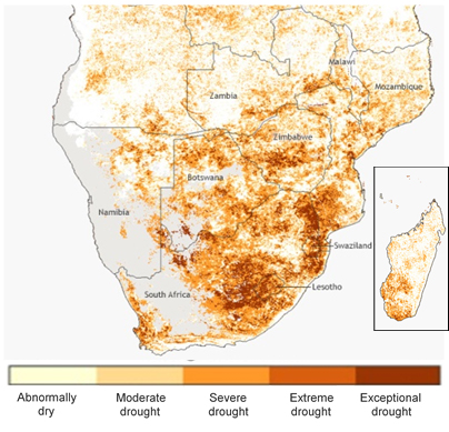 February 2016, just weeks from the main maize harvest. Map by Dan Pisut and Climate.gov, based on NOAA AVHRR satellite data from the STAR programme NESDIS