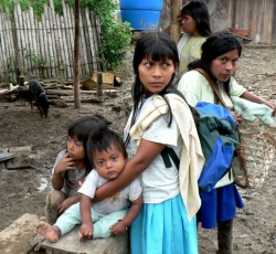 Due to frequent fighting in the South, near the border with Ecuador, the local Awa people have been repeatedly displaced over the past three years. Credit: MH Verney