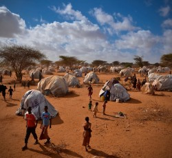 Nov 2011, Dadaab, Kenya: In 2012, a record-setting US$485 million in CERF funding was dispersed to 546 projects in 49 countries and territories. Photo: Internews