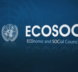 ECOSOC: The future of humanitarian affairs (VIDEO)