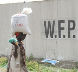 12 January 2012, Jonglei State: The World Food Programme begins food distribution for people displaced by inter-communal violence between the Murle and Lou Nuer tribes. Credit: UNMISS/Isaac Gideon