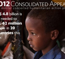 Mid-year review of Consolidated Appeal Process shows sharp increase in needs. Credit: IOM