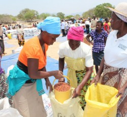 Zvishavane district, Midlands province, with the highest number of food insecure households, was among the first to receive food assistance in October. Credit: Matilda Moyo/OCHA