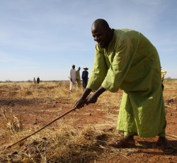 Maradai Region, Niger: Local people helping to rehabilitate farmlands under a cash-for- work programme which allows them to earn some money to support their families. Credit WFP/Phil Behan